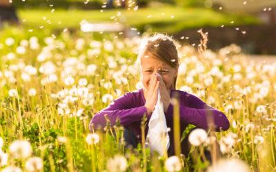 Trápí vás jarní alergie? Poznejte její příčinu