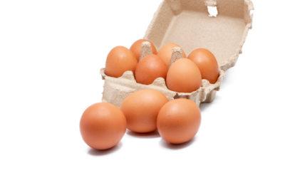 Jak se vyvarovat riziku salmonelózy?